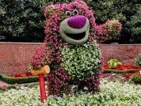 Цветочные выставки