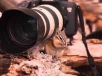 Фототуризм